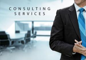 Consulting | DavidCerdabiz