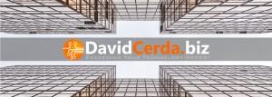 DavidCerdaBiz